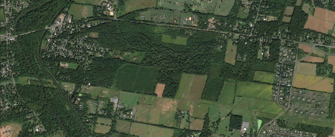Aerial photo of the Hutcheson Memorial Forest.